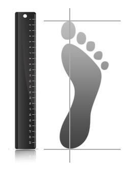 pėdos ir varpos dydis